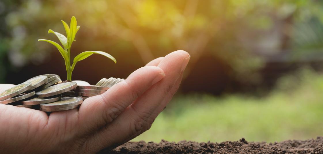 growing giving